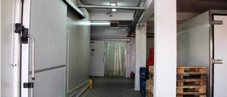 Ο αποθηκευτικός χώρος με τους ψυγειοκαταψύκτες